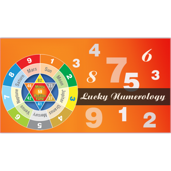 Career Numerology Report