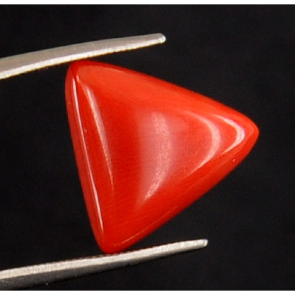 Natural Triangular Shape 5.83 ct Certified Italian Red Coral-SOLD -