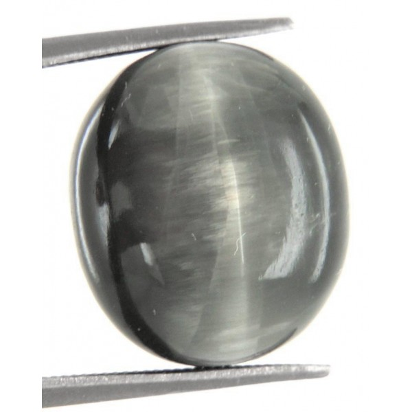 15.65 Carat Certified Cat's Eye Gemstone
